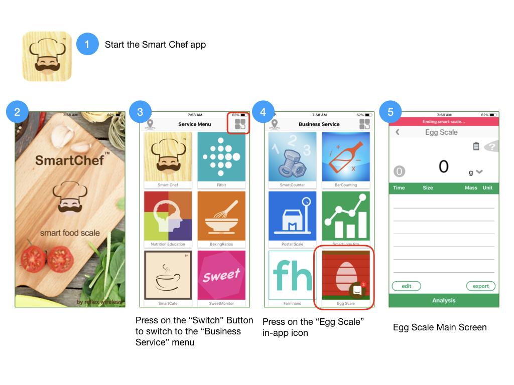 start egg scale app